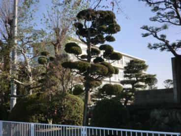 浜松市立積志中学校の画像2