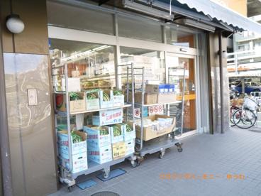 アコレ 高島平8丁目店の画像4