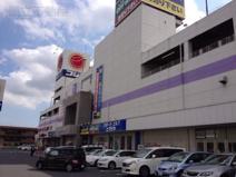 コジマNEW習志野店