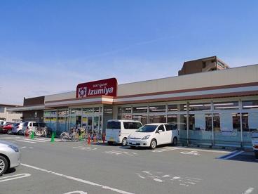 デイリーカナートイズミヤ 新大宮店の画像2