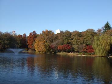 井の頭恩賜公園の画像1