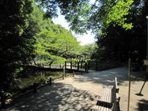 藤崎森林公園