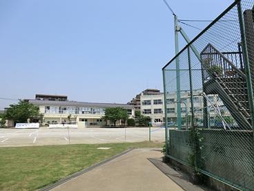 足立区立 中島根小学校の画像1