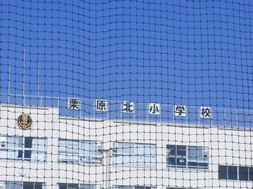 足立区立 栗原北小学校の画像1