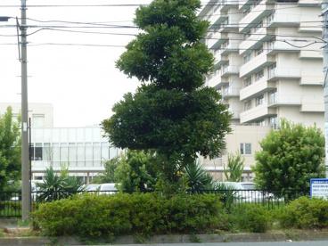 関東労災病院の画像2