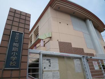 足立区立 梅島小学校の画像4