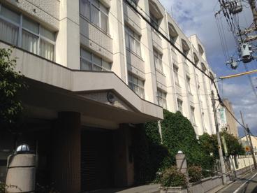 大阪市立 北鶴橋小学校の画像1