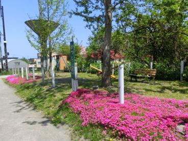 かつら公園の画像1
