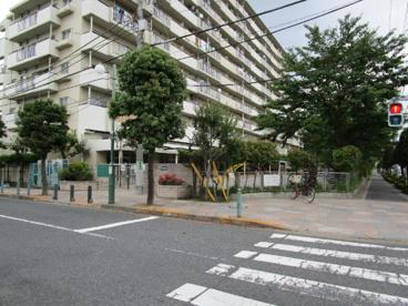 竹の塚保育園の画像3