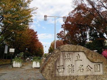 兵庫県立西猪名公園の画像1