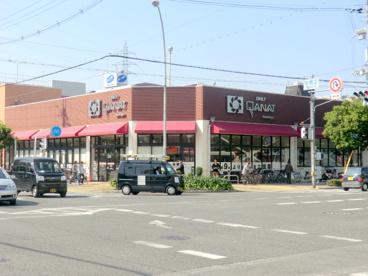 デイリーカナートイズミヤ豊新店の画像1