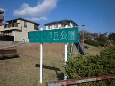 つつじヶ丘公園の画像3
