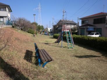 つつじヶ丘公園の画像4