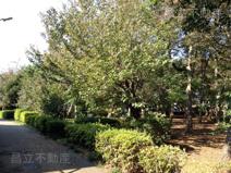 田喜野井公園