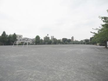 千住スポーツ公園の画像2