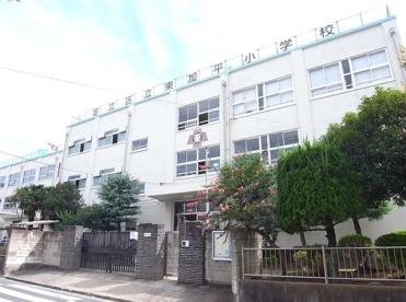 足立区立 東加平小学校の画像3