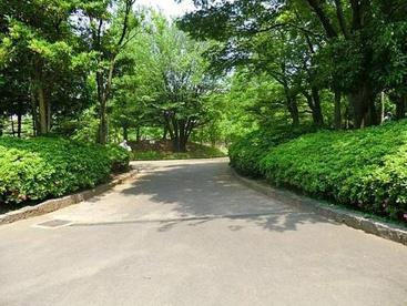 大谷田公園の画像1