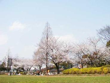 大谷田公園の画像2