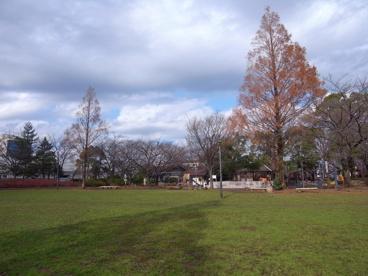 大谷田公園の画像3