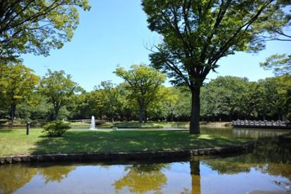 東京都立代々木公園の画像2