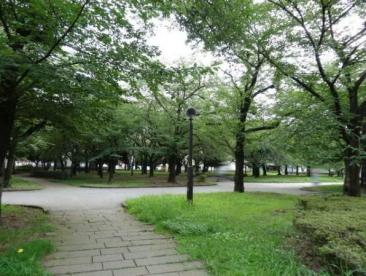 東綾瀬公園の画像2