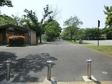 東綾瀬公園の画像3