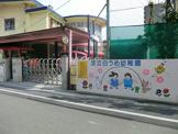 白うめ幼稚園