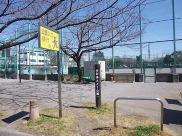 西新井みどり公園の画像2