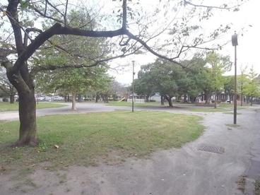 西新井みどり公園の画像3