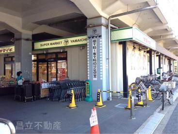ヤマイチ原木中山店の画像1