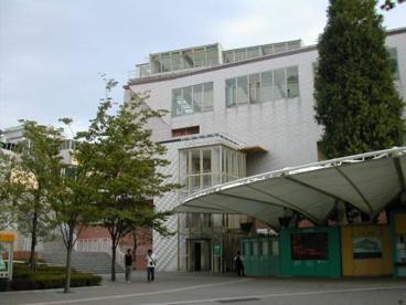 国立オリンピック記念青少年総合センターの画像1