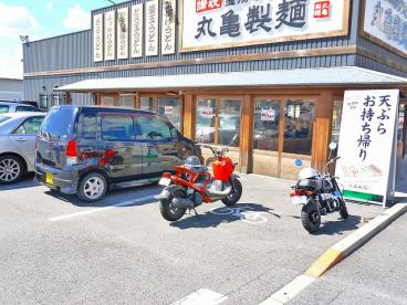 丸亀製麺 天理店の画像3