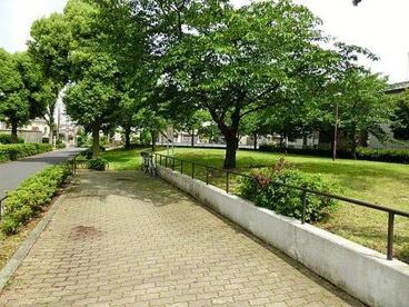 西新井公園の画像1
