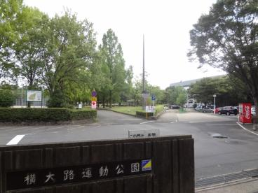 横大路運動公園の画像1