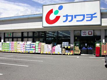 (株)カワチ薬品 大田原南店の画像1