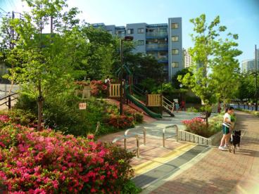 品川区立ひふみ公園の画像1