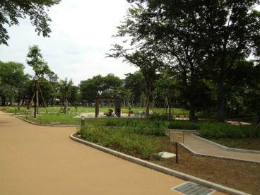 品川区立文庫の森の画像1