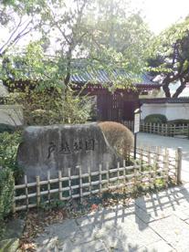 戸越公園の画像1