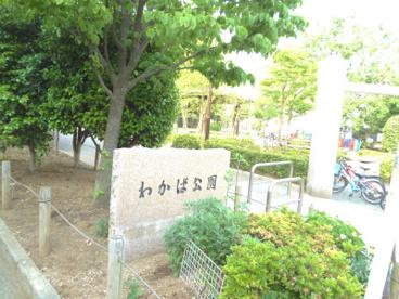 わかば公園の画像1