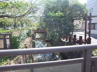 葛西用水親水水路の画像1