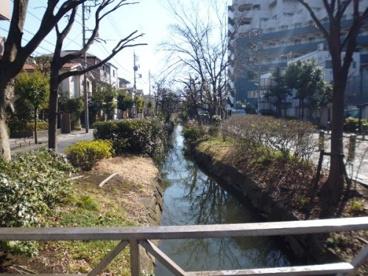 葛西用水親水水路の画像3
