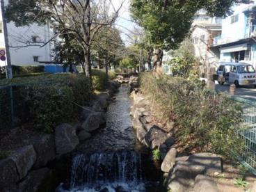 葛西用水親水水路の画像4