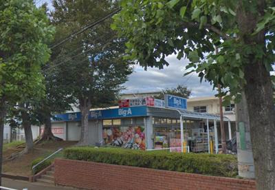 ビッグ・エー 船橋高根台店の画像1