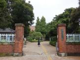 国立東京芸術大学