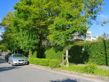奈良市立東登美ヶ丘小学校の画像5