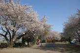 北朝霞公園