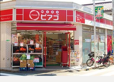 miniピアゴ元浅草3丁目店の画像1
