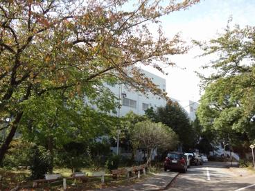 船橋市立 湊町小学校の画像3