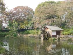 鍋島松濤公園の画像2