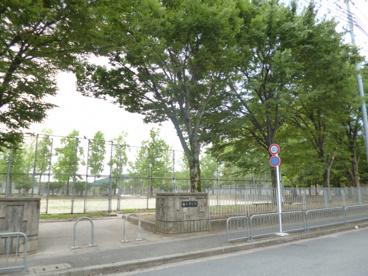 勧修寺公園の画像1